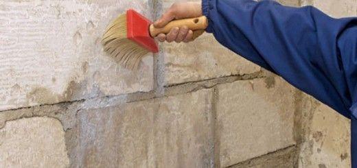 Дополнительно рекомендуется проблемные участки стен обработать антисептиком